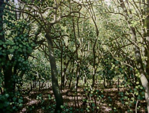 Woods iii - Details