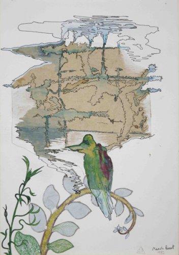 March Parrot - Details