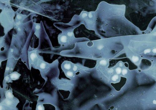 Fluid Bodies #2 - Details
