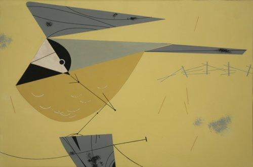 Black-Capped Chickadee - Details