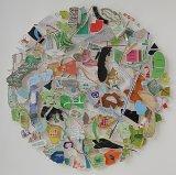 Map Circle (Akimiski Island) - Details