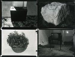 Experimental Narrative - Details