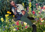 Among Flowers - Details