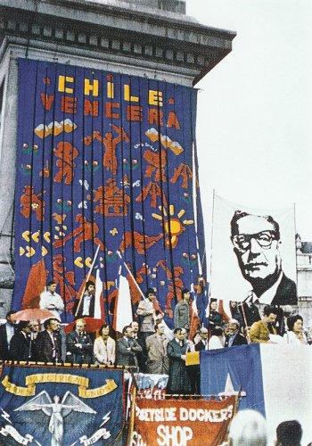 Chile Vencera Banner - Details