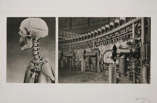 Skull of test dummy/USSR Proton-Synchron Eletrophysical Laboratory - Details