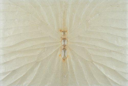 Wing iii - Details