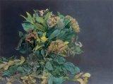 American Bouquet - Details