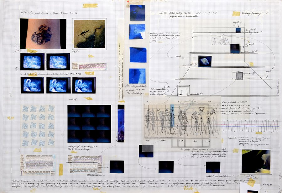 Study for Iris - Details
